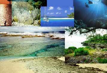 Tonga y otra manera de vivir